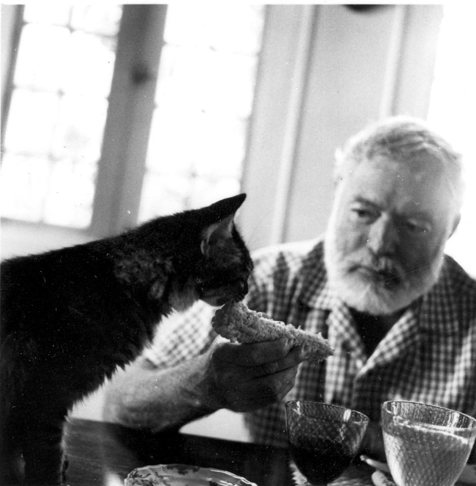 Escritores-y-sus-gatos-Ernest-Hemingway
